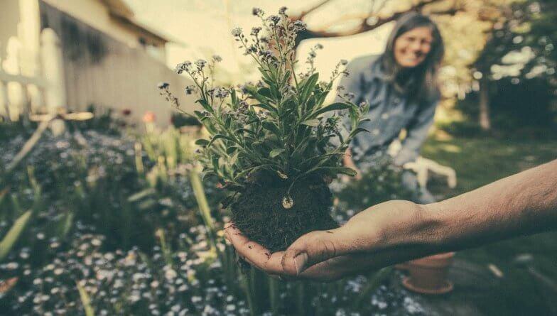 Tetanusinfektion durch Gartenarbeit